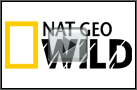 National Geographic Wild live